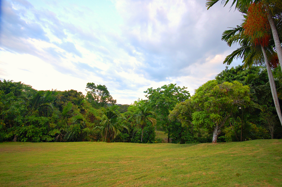 Palm-shaded gardens give way to a wide sun-drenched lawn behind the Cottage ... attracting soccer, badminton and croquet kids or those who simply need to laugh and run till they drop.